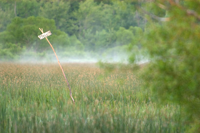 Marker placed in a mist-covered marsh to indicate a hunter's location.