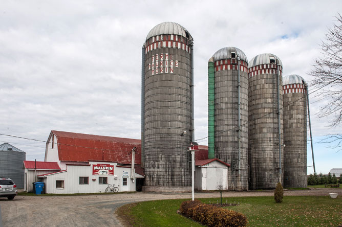 Farm building and five silos
