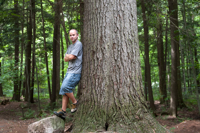 A man leaning against the trunk of an enormous pine tree.